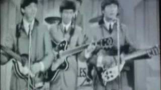 The Beatles - Ask Me Why (2009 Stereo Remaster)