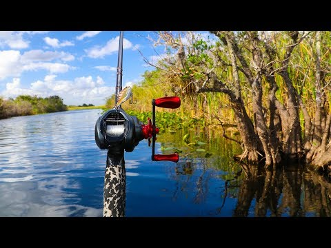 "Fishing DEEP In the Everglades!! (surrounded by alligators) ""Jiggin with Jordan"""