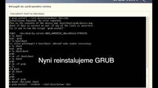 Reinstall GRUB Debian