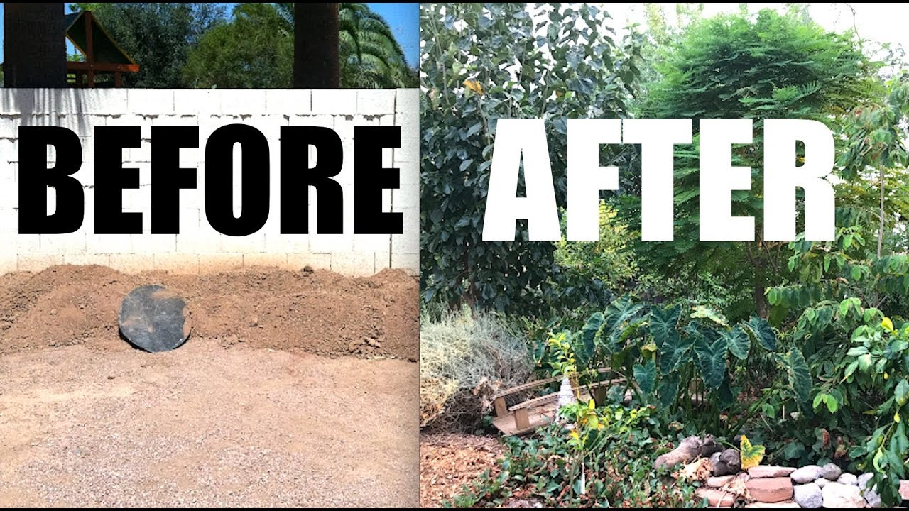 my backyard front yard garden progress 6 years before after rh youtube com