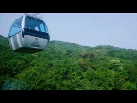China Travel: Putuo Mountain near Shanghai