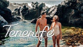 QUE HACER EN TENERIFE - Delfines, Ballenas y Playas de Arena Negra