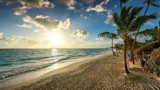 видео Картинки пальма на море
