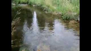 Kamienna rzeka, która łączy Karkonosze i Góry Izerskie