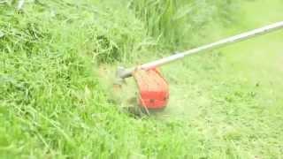Eckman EKPBC04 4-Stroke Professional Brush Cutter / Grass Trimmer