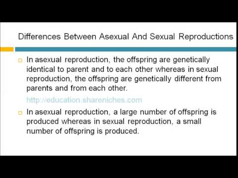 Give 2 differences between sexual and asexual reproduction