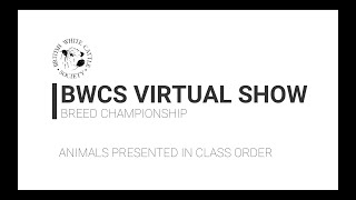 BWCS VIRTUAL SHOW 2020   CHAMPIONSHIP   COWSHEDTV