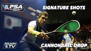 Squash: Signature Shots - Miguel Rodriguez - Canno...