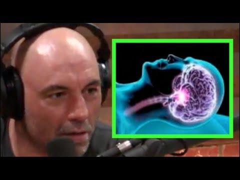Joe Rogan - The Science of Sleep