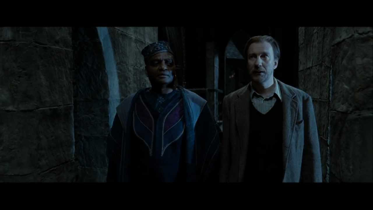 Harry Potter And The Deathly Hallows Part 2 Kingsley And Remus