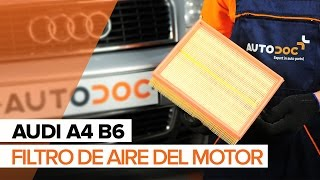 Video-guías sobre la reparación de AUDI