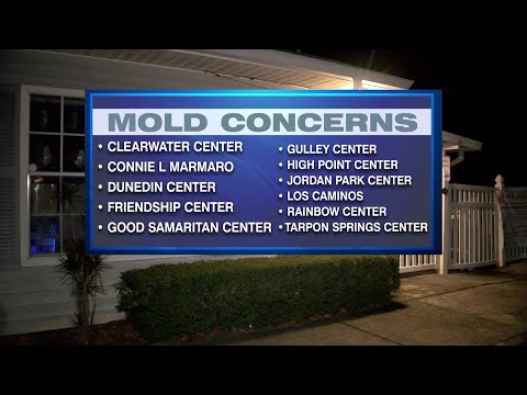 image for Mold concerns close 11 Head Start Centers in Pinellas County