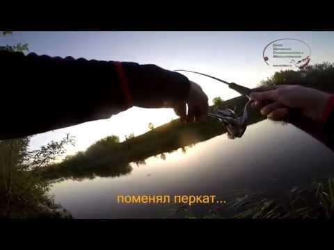 рыбалка в орловской области кружки
