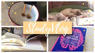 УЧИСЬ СО МНОЙ | Университеты, китайский, книги и кофе