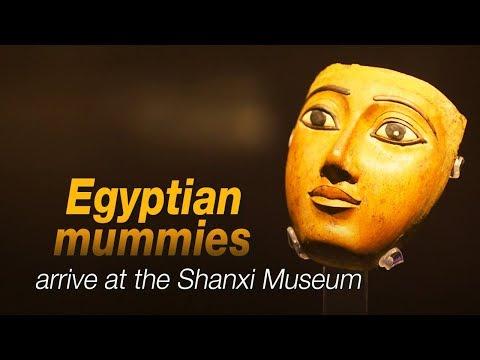 Live: Egyptian mummies arrive at the Shanxi Museum不去埃及也能看到真正的木乃伊
