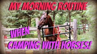 MY MORNING ROUTINE WHEN CAMPING WITH MY HORSES