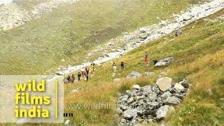 Trekking to Nanda Devi during Nanda Devi Raj Jat Yatra - Uttarakhand