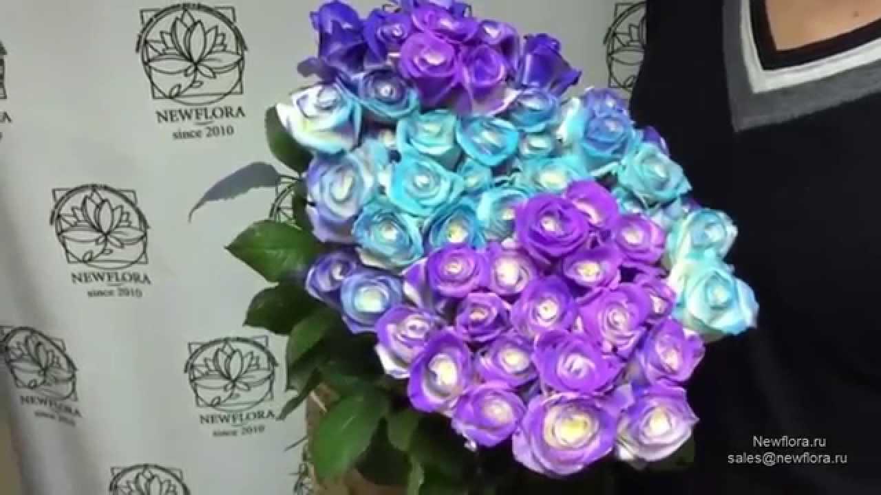 Оао «дорорс» предлагает широкий ассортимент свежих роз, букетов и композиций. А цены вас сказочно удивят!. Сделайте подарок своим любимым.
