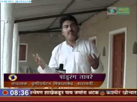 Agri Tourism India-  Baramati , Agri Tourism Training Research & Development Center - Palashiwadi ,