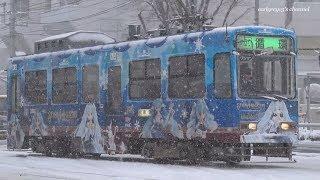 雪ミク電車 2019 SNOW MIKU 2019 by Sapporo City Tram