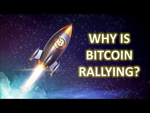 Have We Seen The Bottom??? | Bitcoin