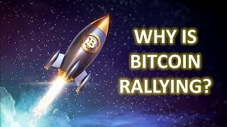 Have We Seen The Bottom???   Bitcoin
