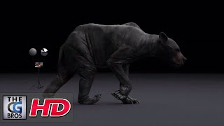 """CGI & VFX Breakdowns: """"Brown Bear"""" - by Ahmed Shalaby"""