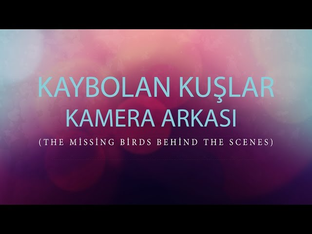 Kaybolan Kuşlar Eğlenceli Anlar (Kamera Arkası)