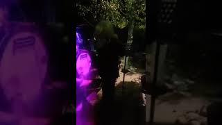 Βάσω Χατζή ...Ζεϊμπέκικα Live 2019