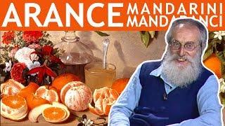 Dott. Mozzi: Arance, mandarini, mandaranci. I frutti della malattia