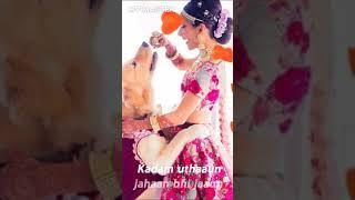 Desi INDIAN bride 😍😍😘😘 Full screen WhatsApp status #desibride #lovevideo #weddingseason