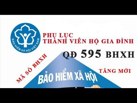 Hướng dẫn phụ lục thành viên hộ gia đình – Quyết định 595 BHXH Phần 2
