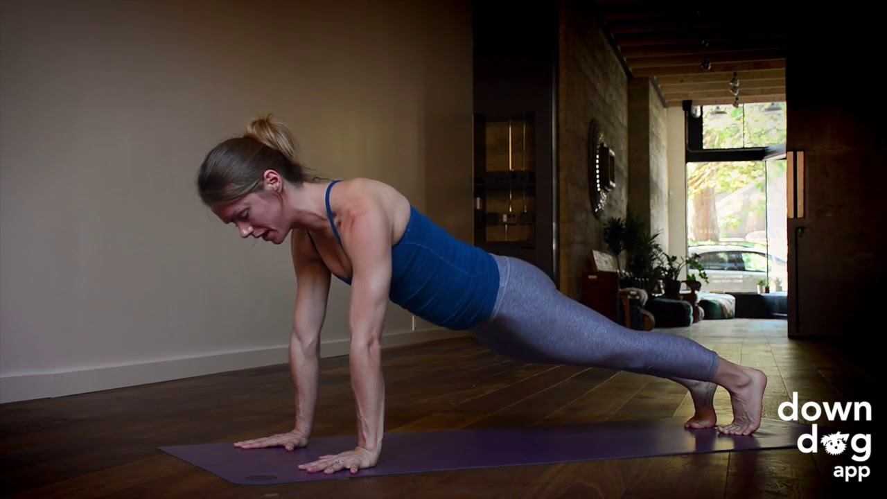 Plank Pose — Yoga Pose Breakdowns with the Down Dog App