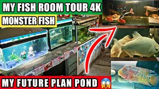 My Fish Room Tour 2018| Monster Tank Aquarium| Silver Arowana, RTC in kolkata, Galiff Street