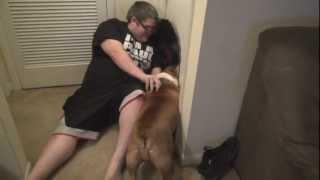 English Bulldog HATES Whoopi Goldberg!