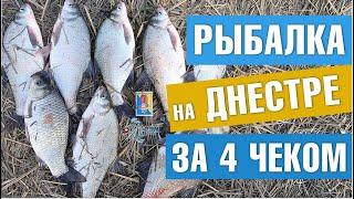 Рыбалка на Днестре за 4 чеком