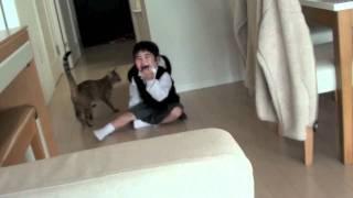 子供とめちゃくちゃ楽しそうに遊ぶ猫2011 thumbnail