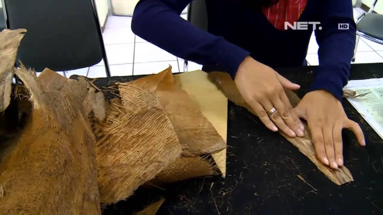 pelepah kelapa