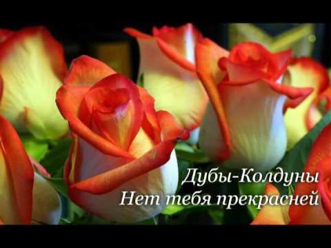 Дубы Колдуны - Нет тебя прекрасней