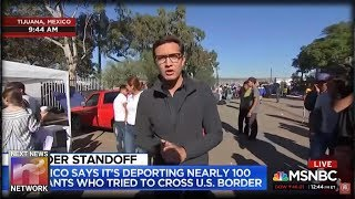 YES!!! The Illegal Caravan Just SURRENDERED On MSNBC!!!