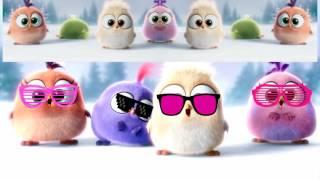 Цыпленок Пи (Angry Birds)