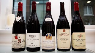 2002 Red Burgundy: Time To Mature |  Top Red Burgu...