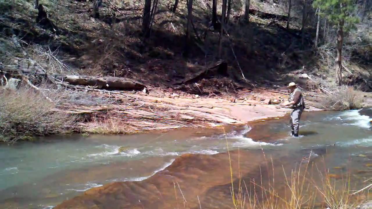 Fly fishing on canyon creek az youtube for Fishing in az