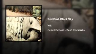 Red Bird, Black Sky