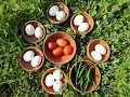 Village Style Egg Curry Recipe | Egg Curry | EGG Gravy | egg masala gravy | Village Food Secrets