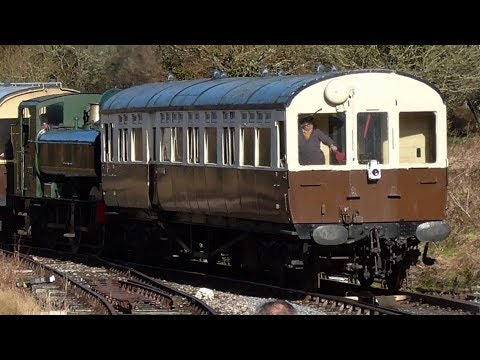 DRIVERS EYE | South Devon Railway | GWR Auto Coach Totnes To Buckfastleigh | 16/2/18