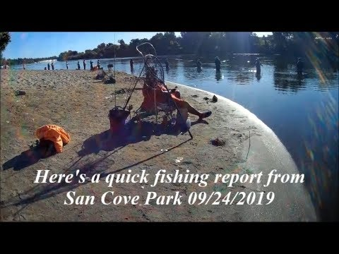 Sacramento River Salmon Bank Fishing Report From Sand Cove Park 9/24/2019
