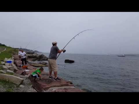Hmong porgy fishing newport ri part3 youtube for Ri fishing regulations