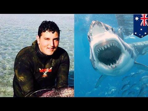 Kolejny atak rekina ludojada w Australii. Nastolatek nie żyje.