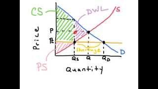 Preis Decken - AP Economics